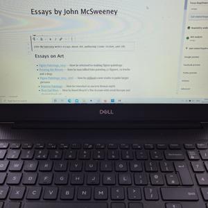 John McSweeney writes essays