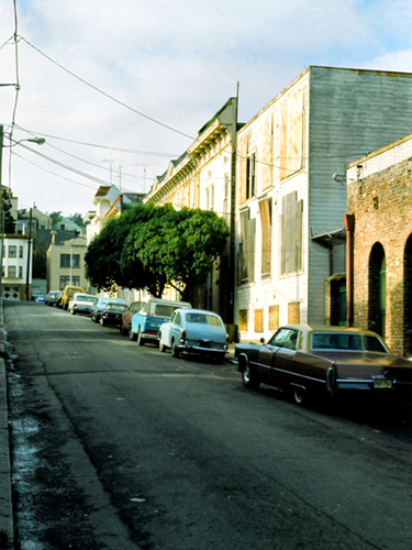 Ivy Street, San Francisco